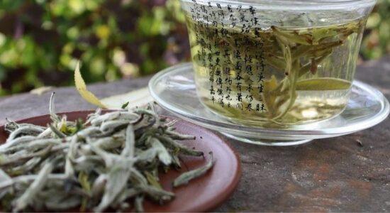 Белый чай - Бай Ча