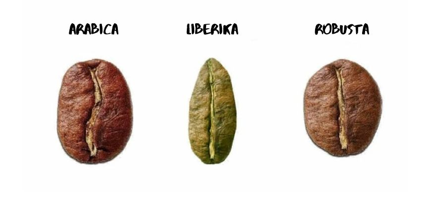 LIBERIKA