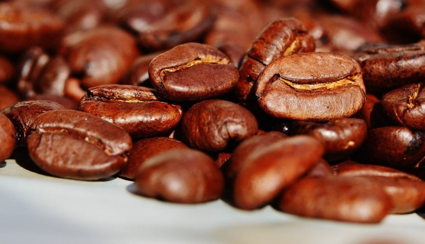зерно кофе illy